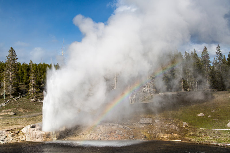 Well-named Riverside Geyser is perhaps the most beautiful geyser in Yellowstone. Photo courtesy of the National Park Service.