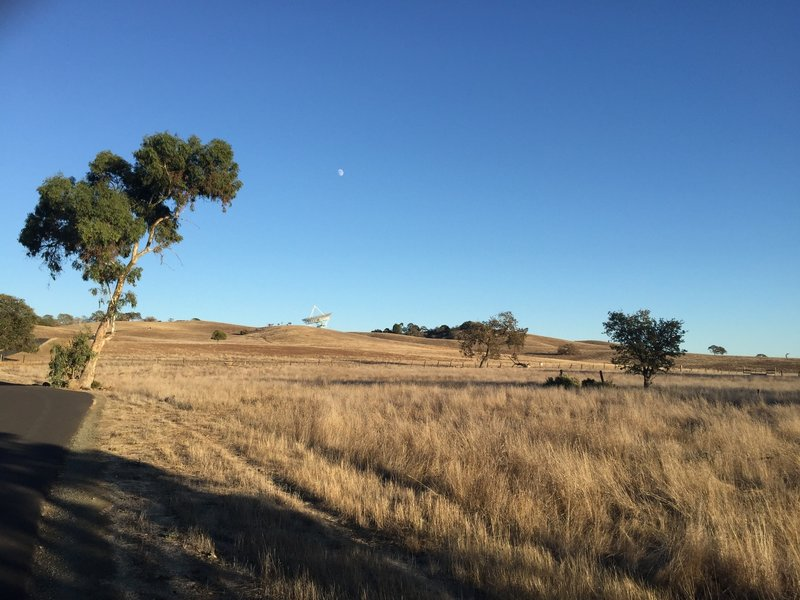 The Stanford Dish sits at the top of the climb. The trail gently climbs to the dish, making it a relatively easy trail, despite the uphill.