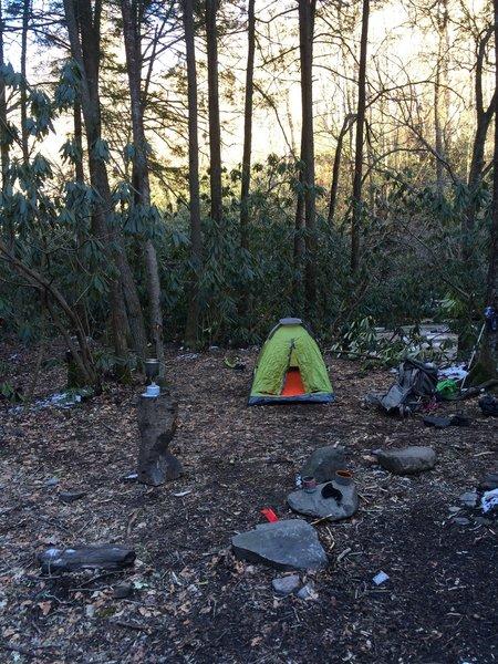 Camp 49: Plenty of great spots next to a pristine creek.