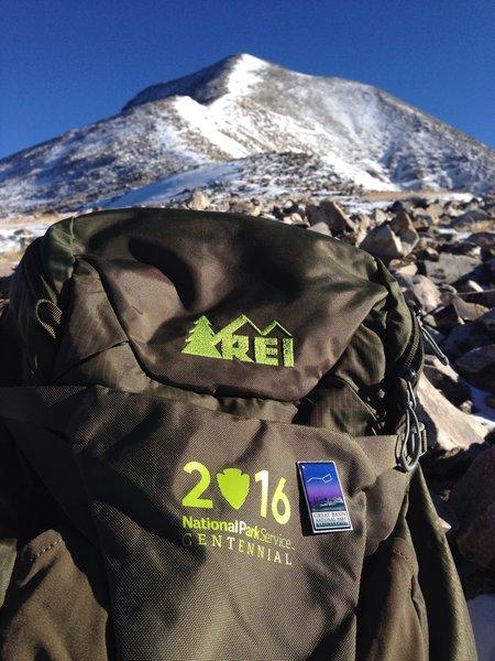 REI National Parks Centennial bag