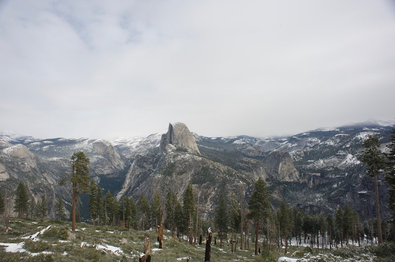 Evidence of a fire that burned through the area.  North Dome, Basket Dome, Half Dome, and Nevada Falls can all be seen in the distance.