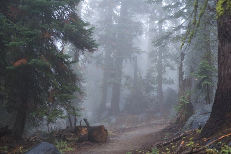 The trail can be foggy or cloudy in the fall and winter.  Make sure you check conditions before heading out.