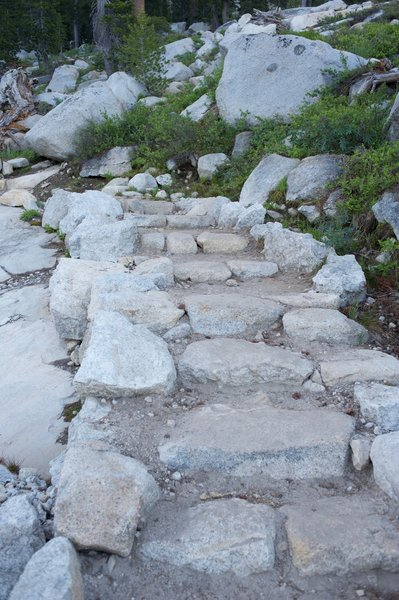 This part of the trail is the most grueling as it climbs via switchbacks.  In some places there are steps like this to help climbing.