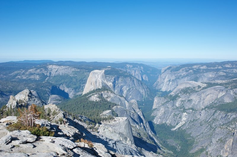 Half Dome and Yosemite Valley in the distance.  The view from the top of Clouds Rest provides you a  great view of the entire park.