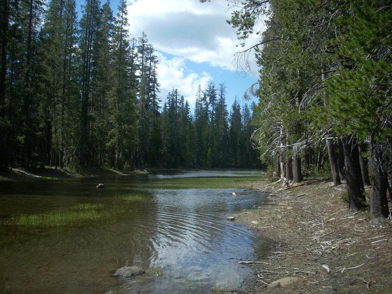 Lower Twin Lake wetlands. with permission from aliandjgohiking