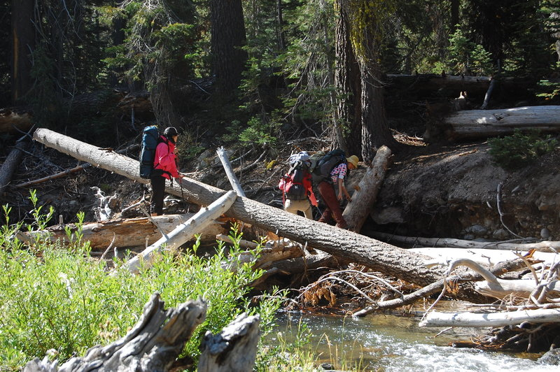 Crossing Kings Creek.