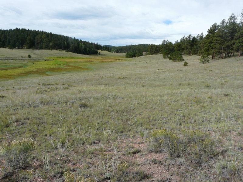 Meadows along the Hornbek Wildlife Loop.
