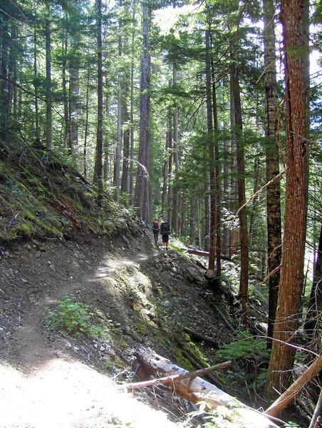 Thunder Creek Trail.