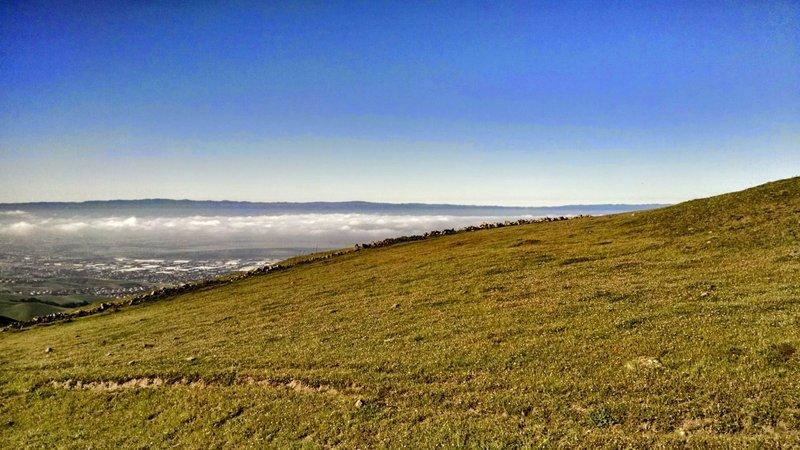 Mission Peak Regional Preserve.