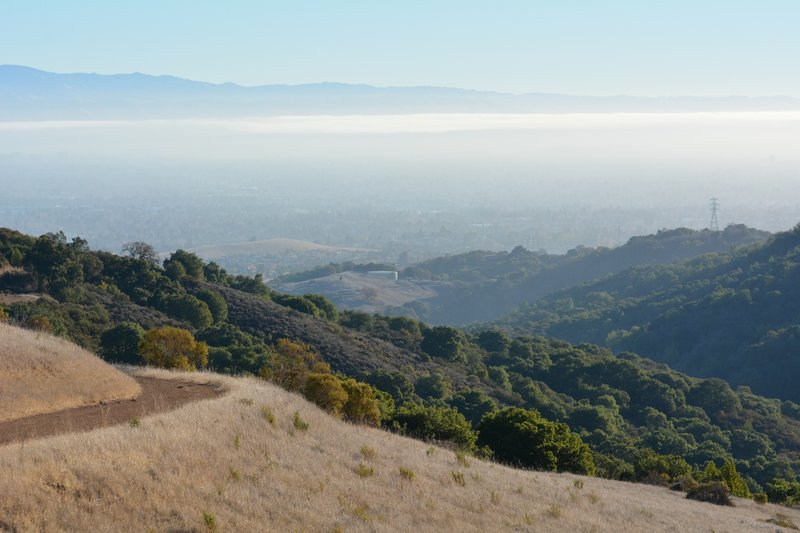 Rising above the Bay Area smog.