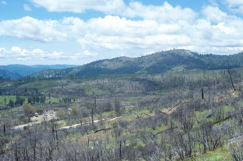 The Big Meadow Fire started as a prescribed burn in August 2009, but grew out of control.  The damage you see in this shot is the result of that burn.