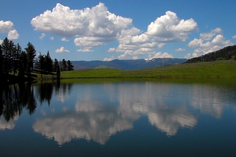 Trout Lake in Yellowstone National Park. with permission from Ralph Maughan