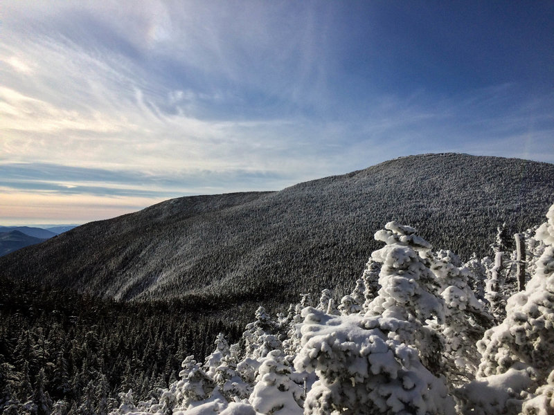 View of the Moosilauke summit from along the trail.