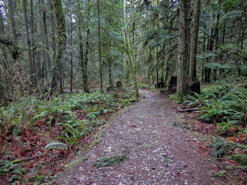 George's Way Trail.