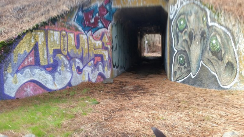 Graffiti on the railroad tunnel, northeast side.