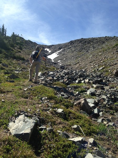 Easy scramble from Glacier Basin Trail up to Mount Ruth, east side of Mount Rainier NP (start from White River Campground trailhead).