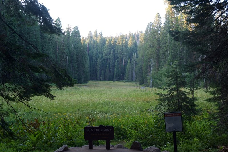 Crescent Meadow from the Loop Trail.