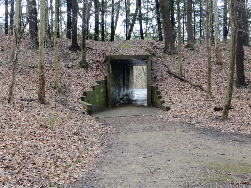 Tunnel through the hill on the south side of Lake Kendall.
