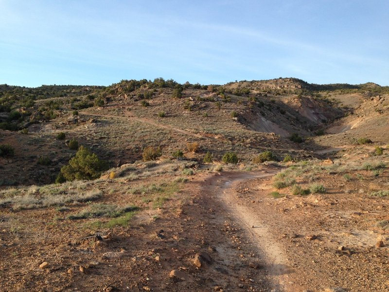 The initial climb up Tabeguache Trail.