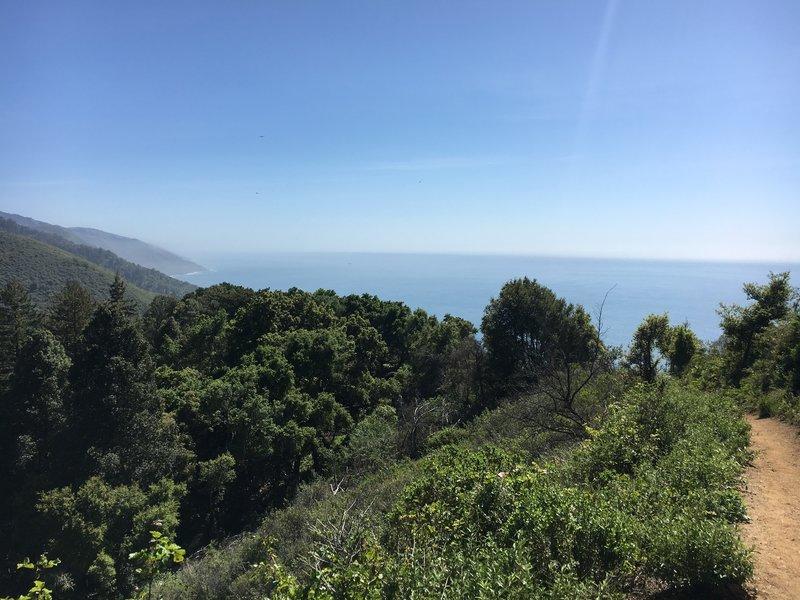 Beautiful view of ocean from Ewoldson Loop.