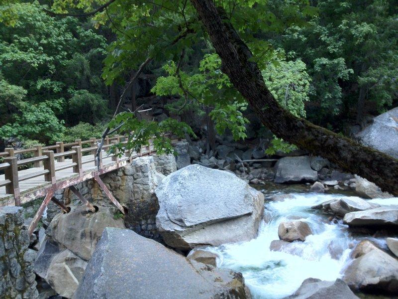 Wooden Bridge on Mist Trail.