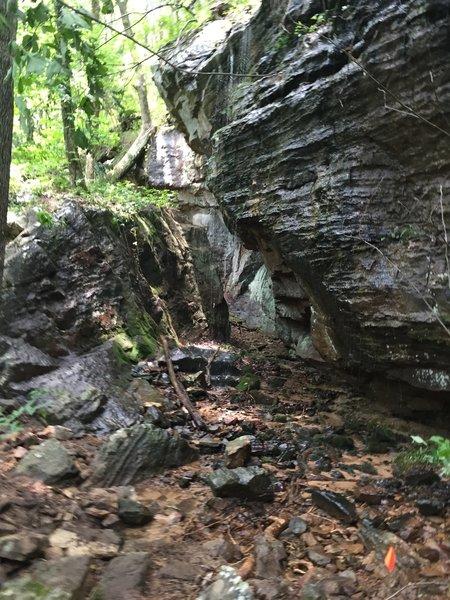 Stone cut on the Buzzard Falls trail.