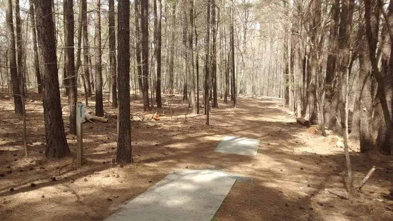The trail passes by the disc golf course, so keep an eye out for frisbees!