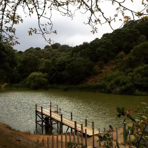 Water Dog Lake