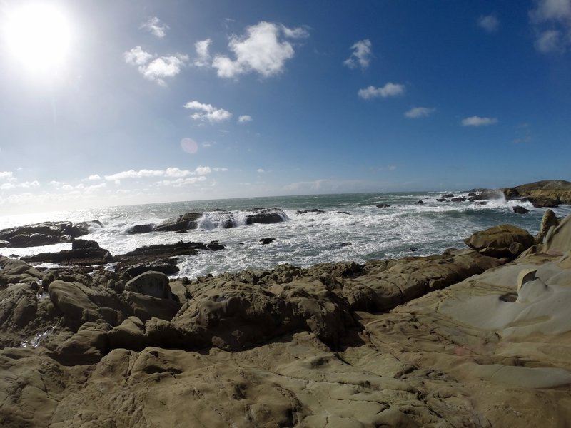 Coastal views from the Atkinson Bluff Trail.