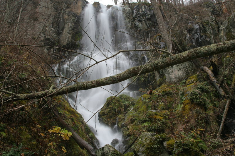 To reach this view of Lewis Falls from its base, you'll need to do some bushwhacking.