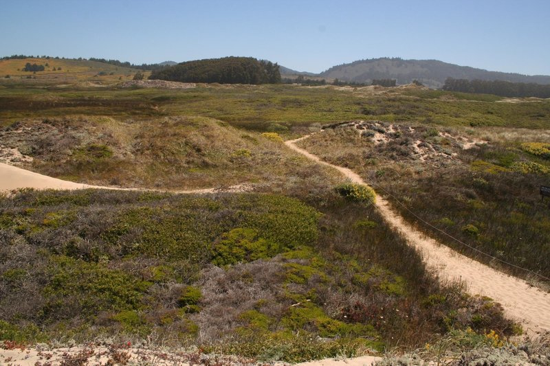 East view of dunes towards Santa Cruz Mountains with permission from Edward Rooks