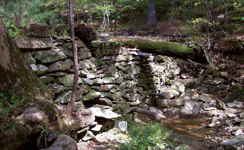 The dam along Pott's Branch Trail. with permission from Justin P