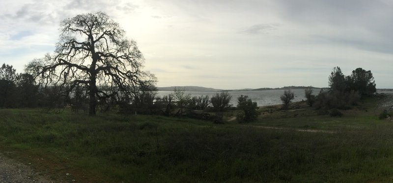 View of Folsom Lake from The Snake Pit.