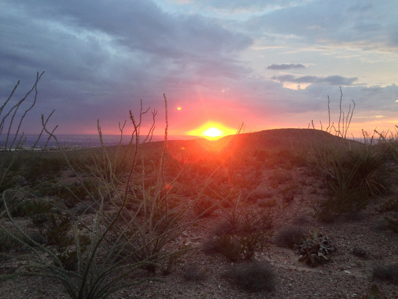 A high desert sunset along the ocotillo fields of Little Moab.