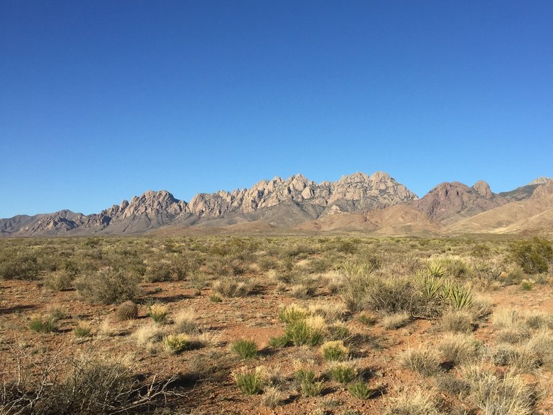 The view of the Organs from La Maria Trail and Sierra Vista Trail is outstanding.