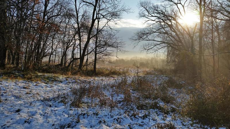 View from Seneca Bluffs on a snowy morning.