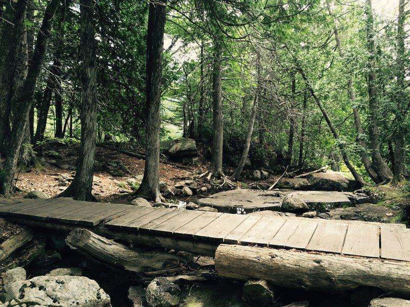 Acadia Mountain Trail.