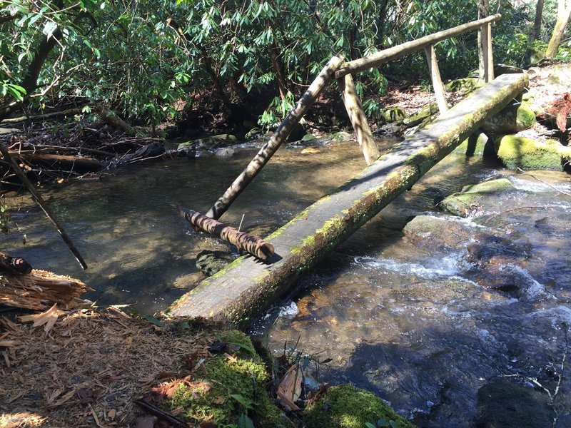 One of six stream crossings near the beginning of the Twentymile Trail. Two of these small bridges are in a slight state of disrepair.