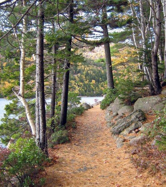 Trail around Jordan Pond.