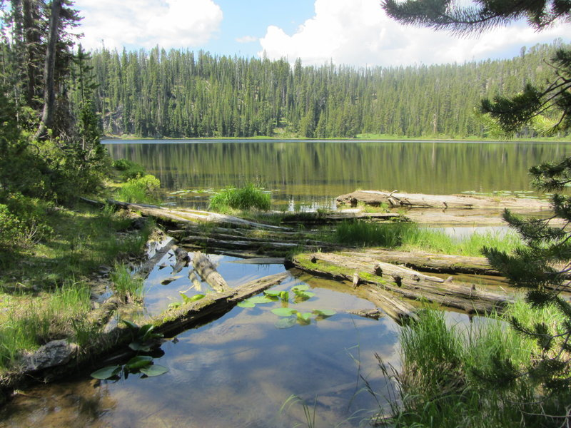 The outlet to lovely Pocket Lake.