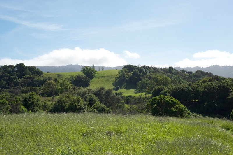 Looking back toward the Foothills Open Space Preserve.