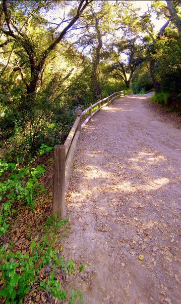 Wood Canyon Trail.