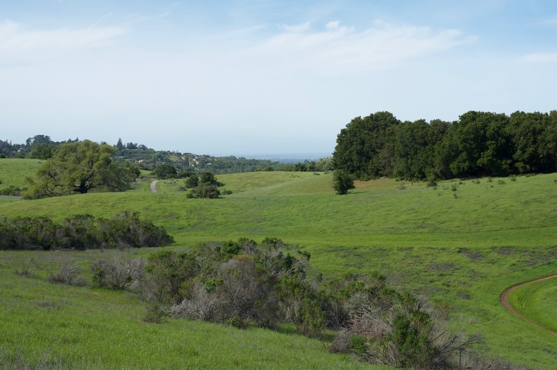 You can see the Meadowlark Trail and the Bowl Loop Trail from this trail.