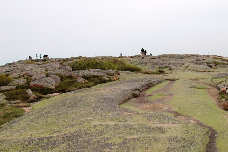 Protect the mountain landscapes as you make your way to the top of Cadillac Mountain.
