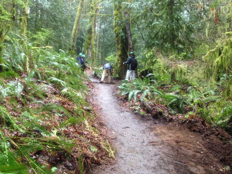 Here we are hard at work maintaining the trail! GO WTA!