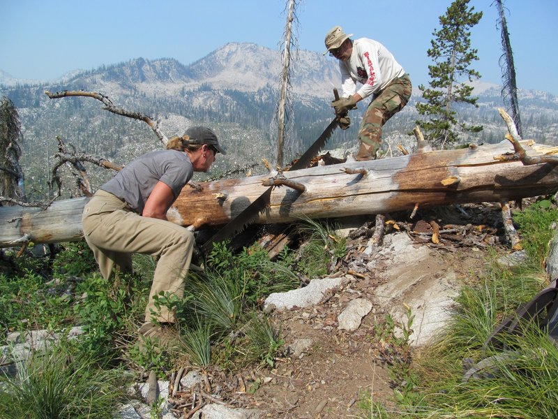Idaho Trails Association volunteers cutting logs out of the Hum Lake Trail.