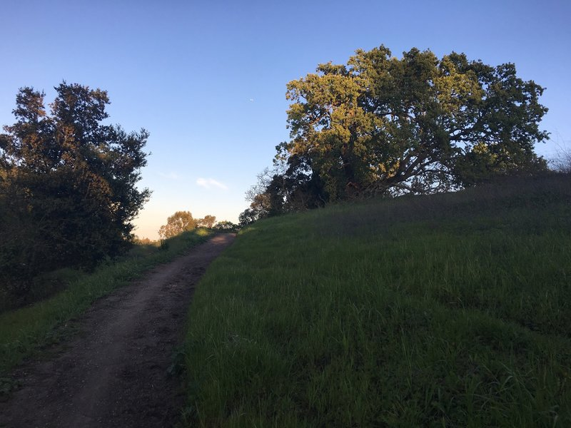 The trail as it descends along the hillside.