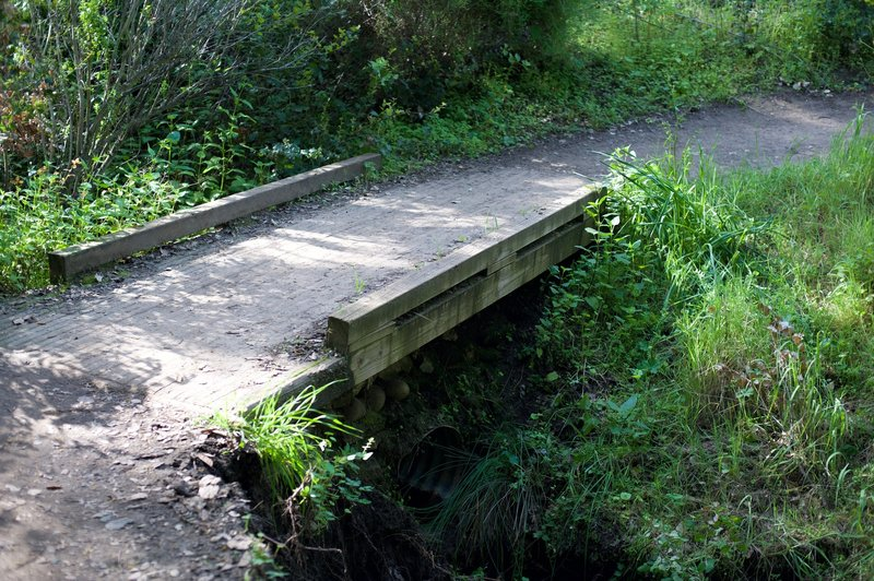 A small creek cuts across the trail, but is easily crossed by this small bridge.