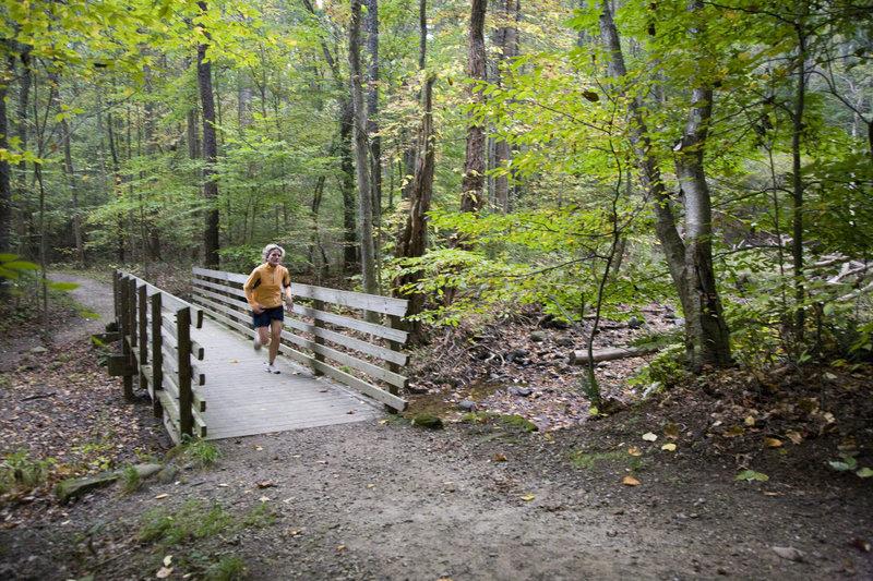 A runner enjoying the quiet of spring along Boston Run Trail. Photo by Sara Guren.