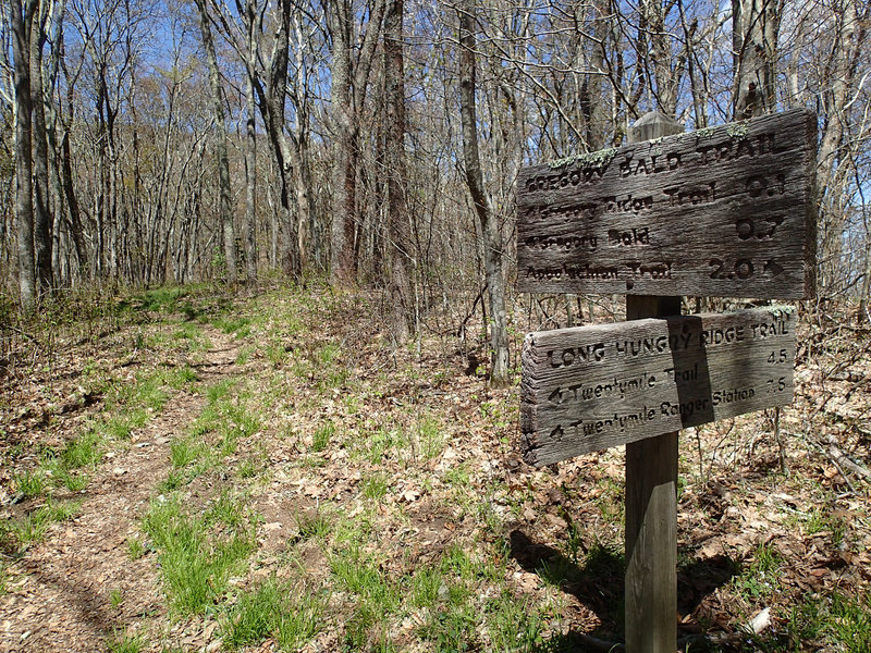 Junction of the Long Hungry Ridge Trail and Gregory Bald Trail. with permission from Mike Lerch